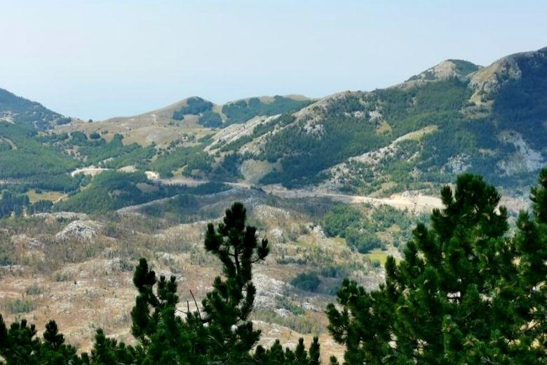 Landschaft im Lovcen Nationalpark in Montenegro